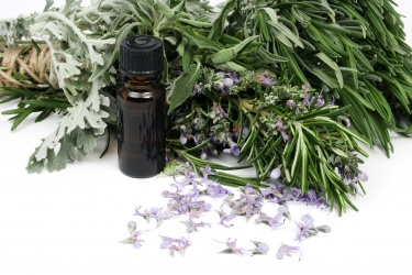 bigstock-rosemary-and-other-mediterrane-26051072